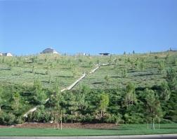 irrigation-hill-rescan