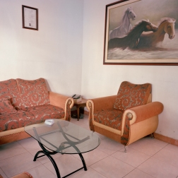 living-room-horses